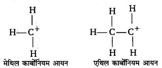 UP Board Solutions for Class 11 Chemistry Chapter 12 Organic Chemistry Some Basic Principles and Techniques img-58