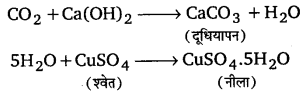 UP Board Solutions for Class 11 Chemistry Chapter 12 Organic Chemistry Some Basic Principles and Techniques img-97