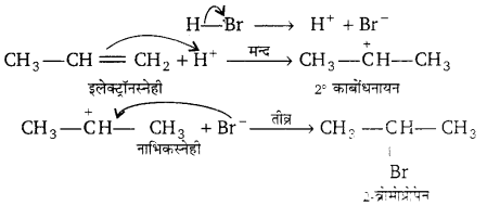 UP Board Solutions for Class 11 Chemistry Chapter 13 Hydrocarbons img-20