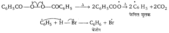 UP Board Solutions for Class 11 Chemistry Chapter 13 Hydrocarbons img-21
