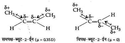 UP Board Solutions for Class 11 Chemistry Chapter 13 Hydrocarbons img-53