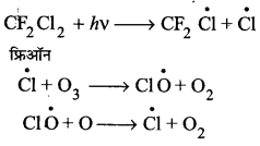 UP Board Solutions for Class 11 Chemistry Chapter 14 Environment Chemistry img-11