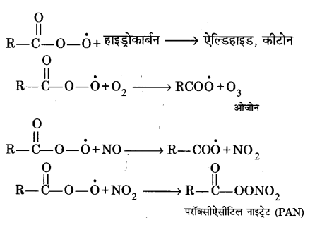 UP Board Solutions for Class 11 Chemistry Chapter 14 Environment Chemistry img-2