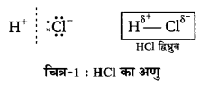 UP Board Solutions for Class 11 Chemistry Chapter 4 Chemical Bonding and Molecular Structure img-24