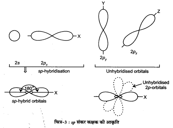 UP Board Solutions for Class 11 Chemistry Chapter 4 Chemical Bonding and Molecular Structure img-29