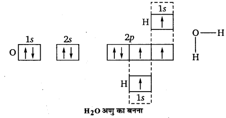 UP Board Solutions for Class 11 Chemistry Chapter 4 Chemical Bonding and Molecular Structure img-69