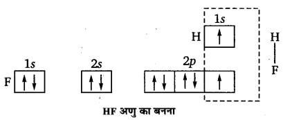 UP Board Solutions for Class 11 Chemistry Chapter 4 Chemical Bonding and Molecular Structure img-71