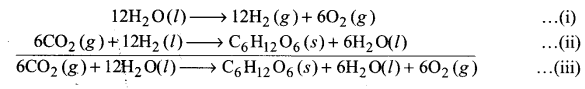 UP Board Solutions for Class 11 Chemistry Chapter 8 Redox Reactionsimg-17