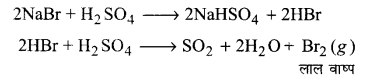 UP Board Solutions for Class 11 Chemistry Chapter 8 Redox Reactionsimg-24