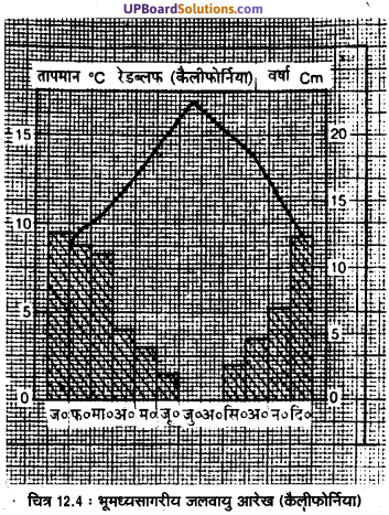 UP Board Solutions for Class 11 Geography Fundamentals of Physical Geography Chapter 12 World Climate and Climate Change(विश्व की जलवायु एवं जलवायु परिवर्तन) img 5