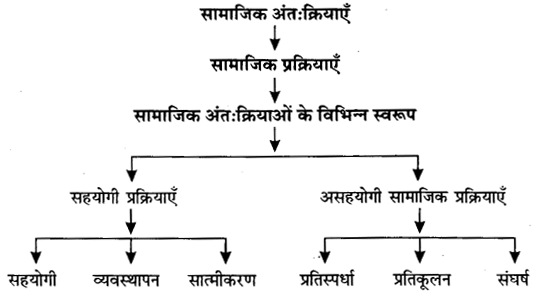 UP Board Solutions for Class 11 Sociology Understanding Society Chapter 1 Social Structure, Stratification and Social Processes in Society 1
