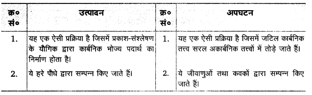 UP Board Solutions for Class 12 BiologyChapter 14 Ecosystem img-3