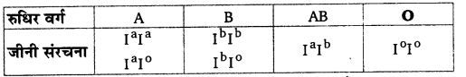 UP Board Solutions for Class 12 BiologyChapter 5 Principles of Inheritance and Variation img-11