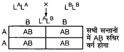 UP Board Solutions for Class 12 BiologyChapter 5 Principles of Inheritance and Variation img-27