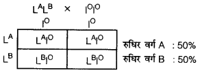UP Board Solutions for Class 12 BiologyChapter 5 Principles of Inheritance and Variation img-30