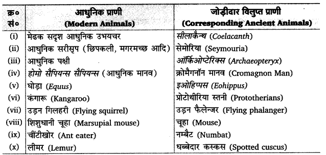 UP Board Solutions for Class 12 BiologyChapter 7 Evolution img-1