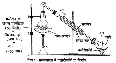 UP Board Solutions for Class 12 Chemistry Chapter 10 Haloalkanes and Haloarenes image 70