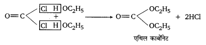 UP Board Solutions for Class 12 Chemistry Chapter 10 Haloalkanes and Haloarenes image 72