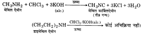 UP Board Solutions for Class 12 Chemistry Chapter 13 Amines image 12