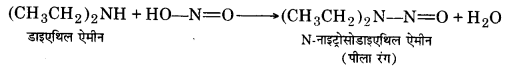 UP Board Solutions for Class 12 Chemistry Chapter 13 Amines image 13