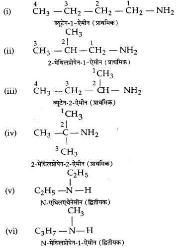 UP Board Solutions for Class 12 Chemistry Chapter 13 Amines image 2
