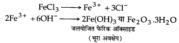 UP Board Solutions for Class 12 Chemistry Chapter 13 Amines image 20
