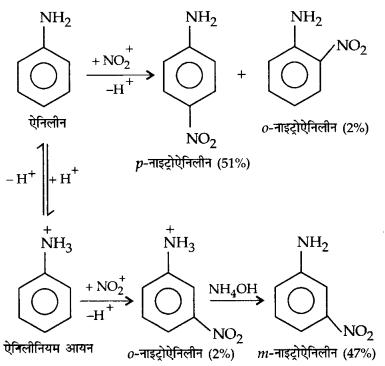 UP Board Solutions for Class 12 Chemistry Chapter 13 Amines image 21