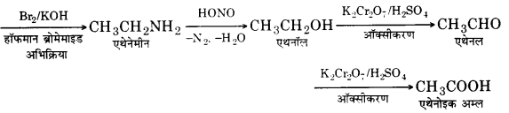 UP Board Solutions for Class 12 Chemistry Chapter 13 Amines image 26