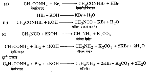 UP Board Solutions for Class 12 Chemistry Chapter 13 Amines image 33