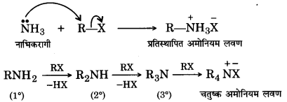 UP Board Solutions for Class 12 Chemistry Chapter 13 Amines image 35