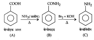 UP Board Solutions for Class 12 Chemistry Chapter 13 Amines image 48