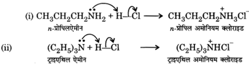 UP Board Solutions for Class 12 Chemistry Chapter 13 Amines image 5