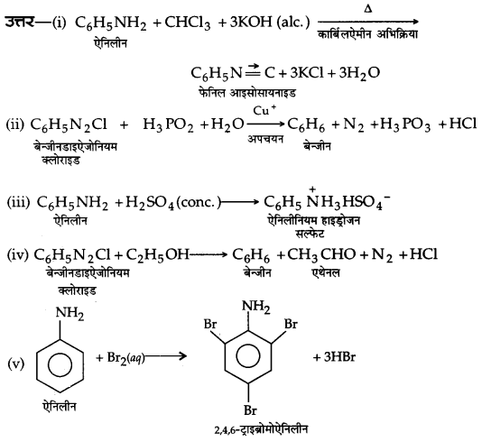 UP Board Solutions for Class 12 Chemistry Chapter 13 Amines image 50
