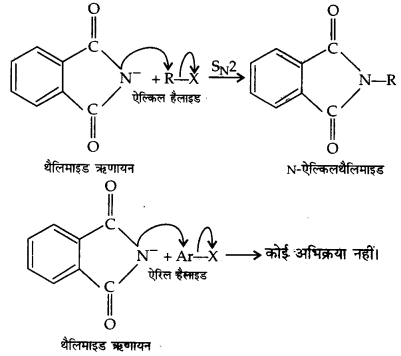 UP Board Solutions for Class 12 Chemistry Chapter 13 Amines image 52