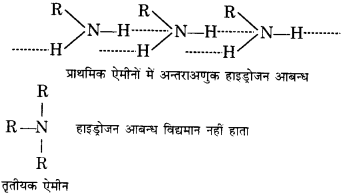 UP Board Solutions for Class 12 Chemistry Chapter 13 Amines image 56