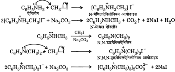 UP Board Solutions for Class 12 Chemistry Chapter 13 Amines image 6