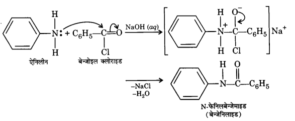 UP Board Solutions for Class 12 Chemistry Chapter 13 Amines image 7