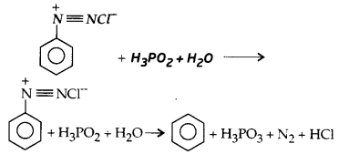 UP Board Solutions for Class 12 Chemistry Chapter 13 Amines image 70