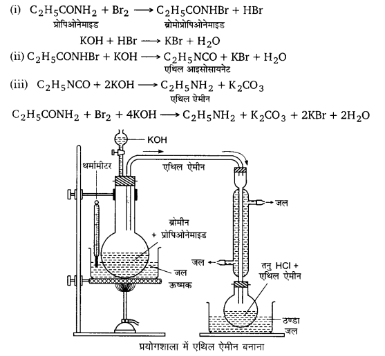 UP Board Solutions for Class 12 Chemistry Chapter 13 Amines image 81
