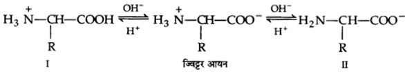 UP Board Solutions for Class 12 Chemistry Chapter 14 Biomolecules image 12