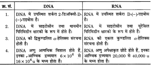 UP Board Solutions for Class 12 Chemistry Chapter 14 Biomolecules image 14