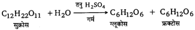 UP Board Solutions for Class 12 Chemistry Chapter 14 Biomolecules image 17