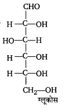 UP Board Solutions for Class 12 Chemistry Chapter 14 Biomolecules image 23