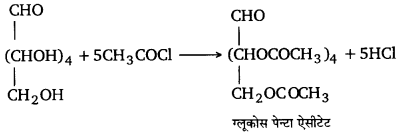 UP Board Solutions for Class 12 Chemistry Chapter 14 Biomolecules image 24