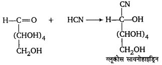 UP Board Solutions for Class 12 Chemistry Chapter 14 Biomolecules image 25