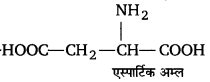 UP Board Solutions for Class 12 Chemistry Chapter 14 Biomolecules image 28