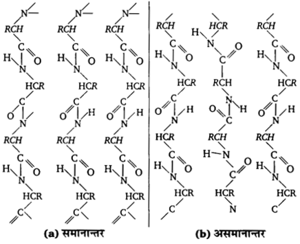 UP Board Solutions for Class 12 Chemistry Chapter 14 Biomolecules image 34