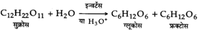 UP Board Solutions for Class 12 Chemistry Chapter 14 Biomolecules image 5