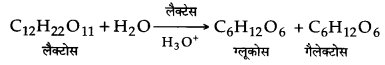 UP Board Solutions for Class 12 Chemistry Chapter 14 Biomolecules image 6