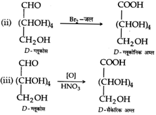 UP Board Solutions for Class 12 Chemistry Chapter 14 Biomolecules image 9